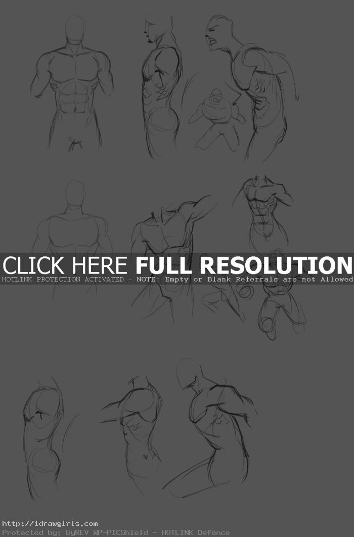drawing torso in different poses