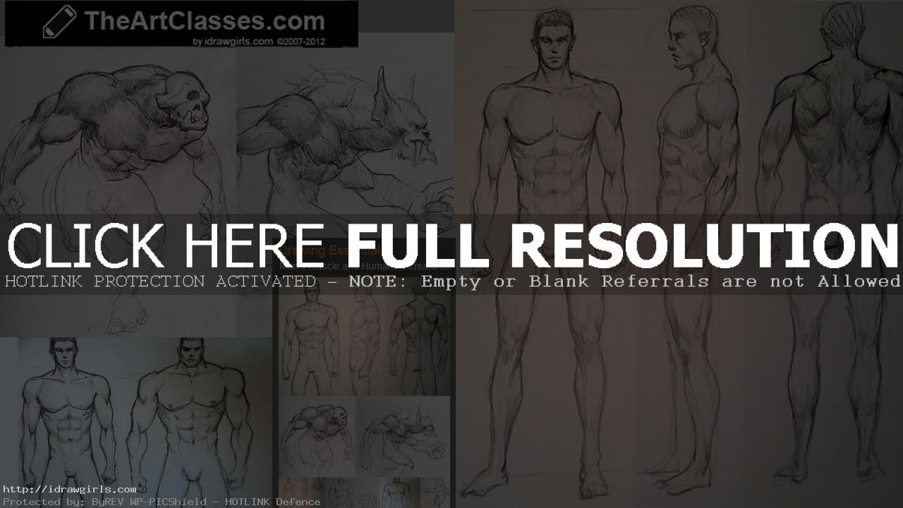 How to draw male figure, body variations and humanoid creatures