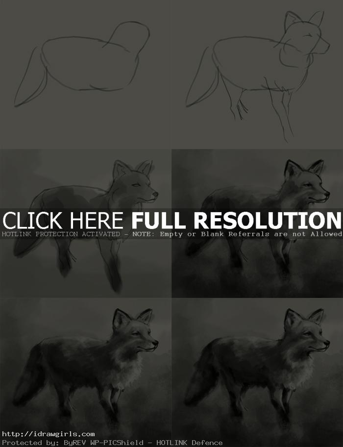 how to draw fox How to draw Fox
