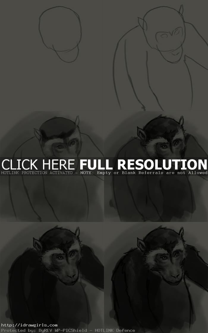 how to draw monkey