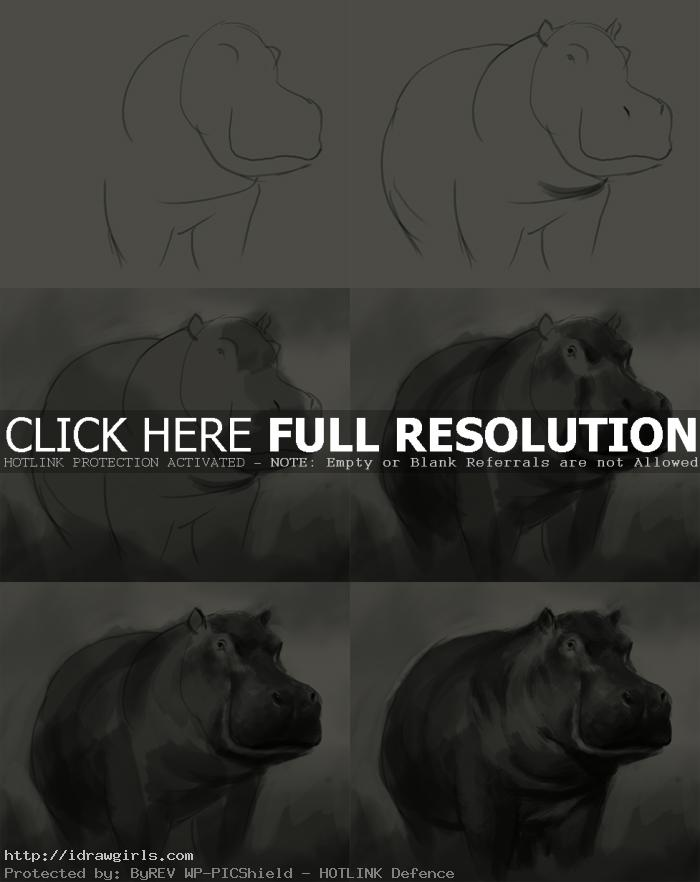 how to draw hippopotamus How to draw hippopotamus
