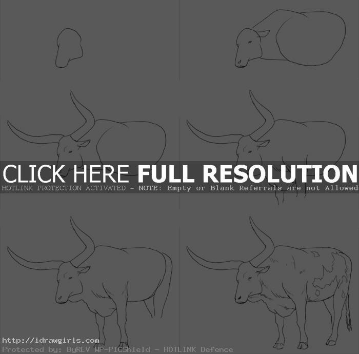 how to draw big horn ox How to draw big horns ox