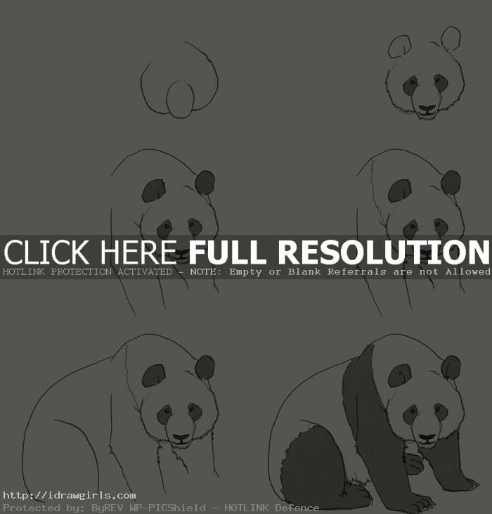 how to draw panda How to draw Panda