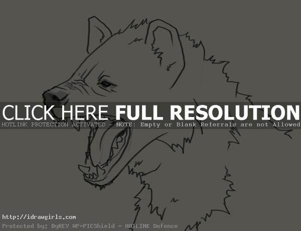 hyena head drawing How to draw hyena