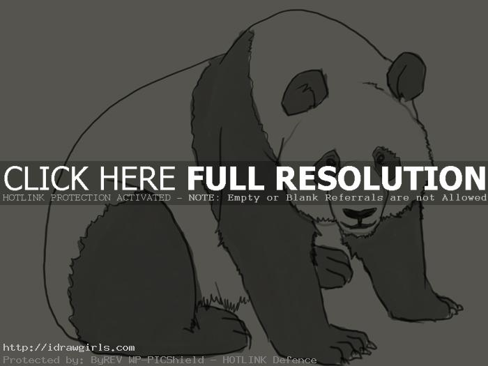 panda drawing How to draw Panda
