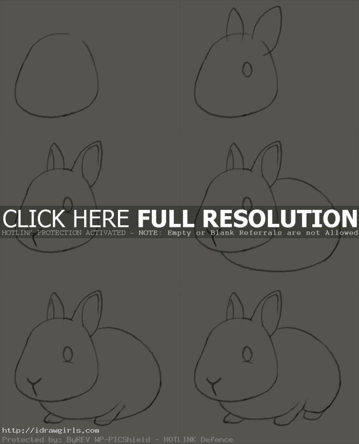 how to draw bunny How to draw bunny