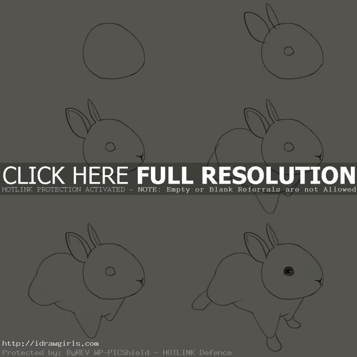 how to draw jackrabbits How to draw jackrabbits