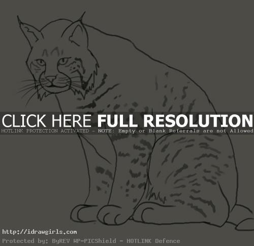 linx drawing