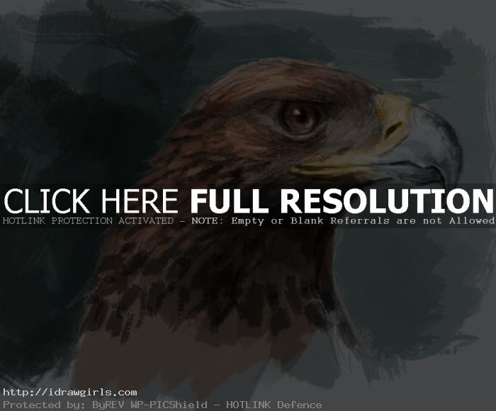 Painting golden eagle tutorial