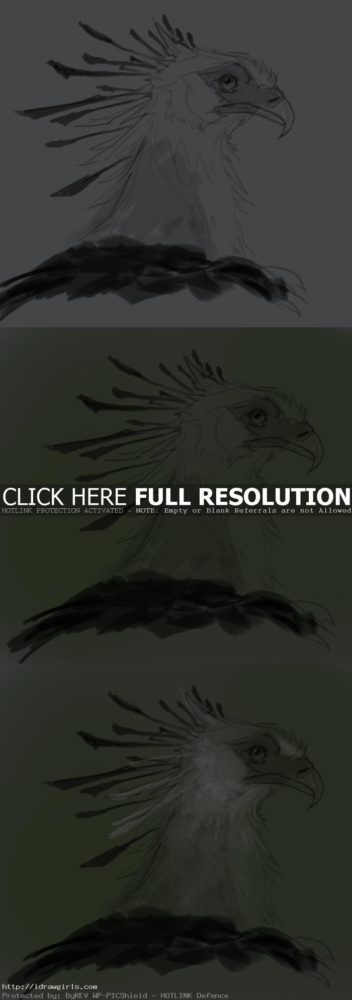 how to paint secretary bird