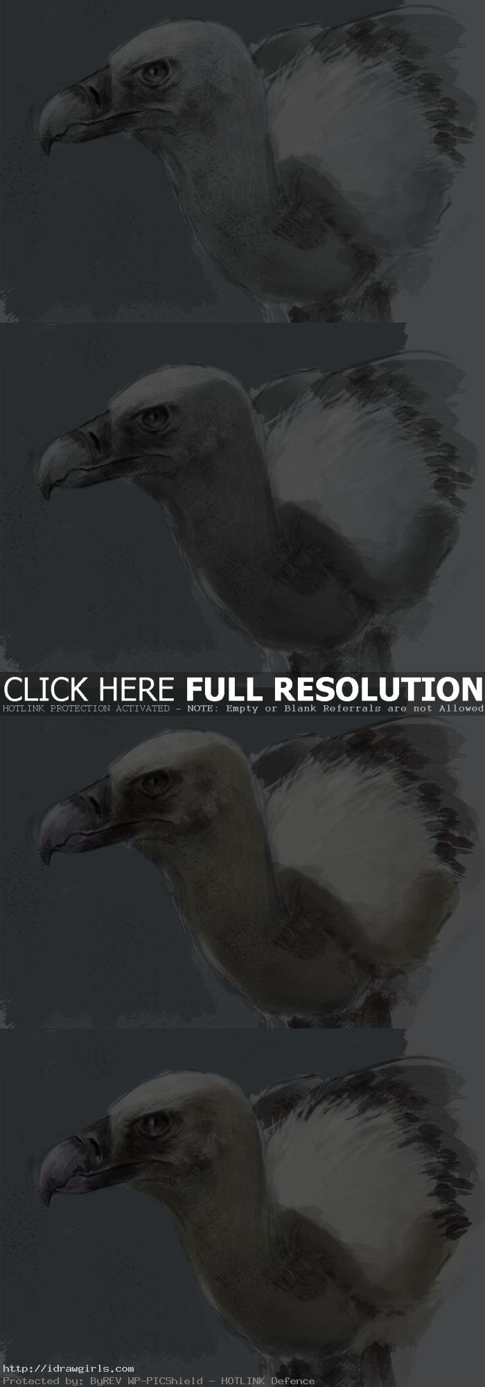 painting vulture tutorial