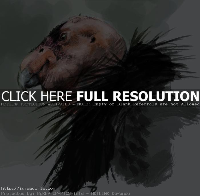 condor painting photoshop