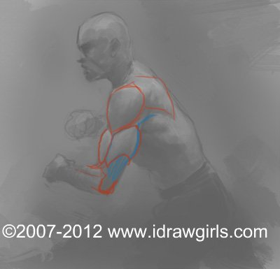 how to draw arm muscles construction Drawing man arm muscles in action pose