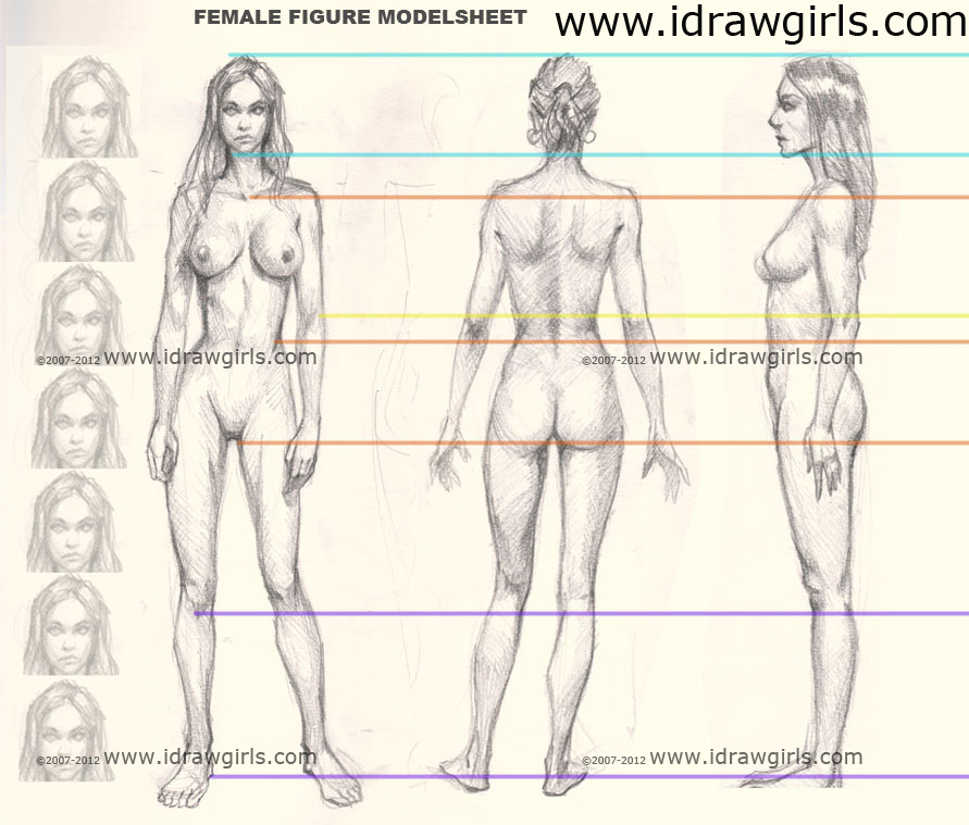 how to draw woman figure Tips on drawing female body