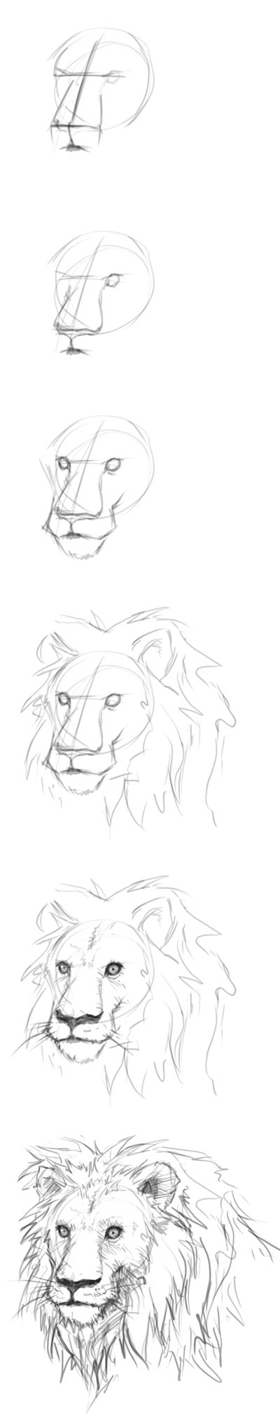 how to draw lion head How to draw lion