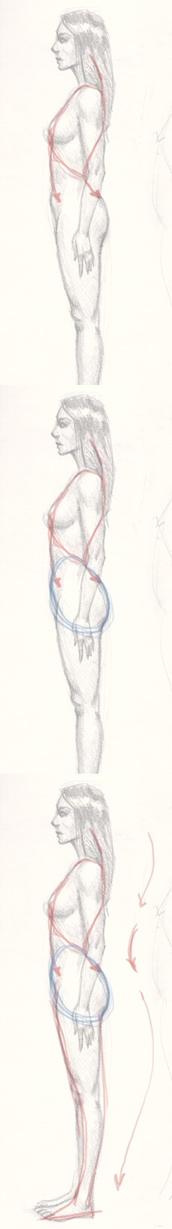draw woman body sideview 01 Learn how to draw woman body side view