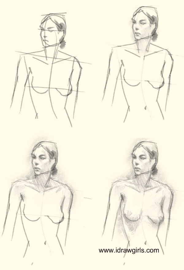 drawing woman figure step 2 How to draw woman upper body