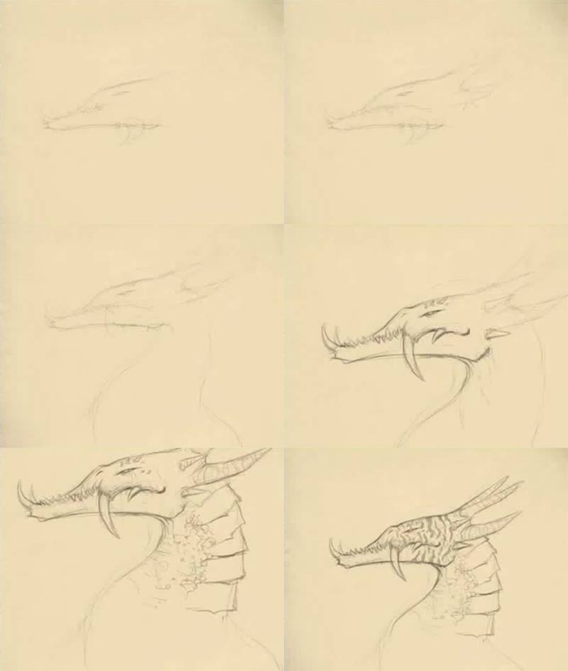 how to draw sabre tooth dragon How to draw Sabre tooth dragon