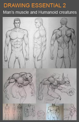 draw male's muscles and humanoids