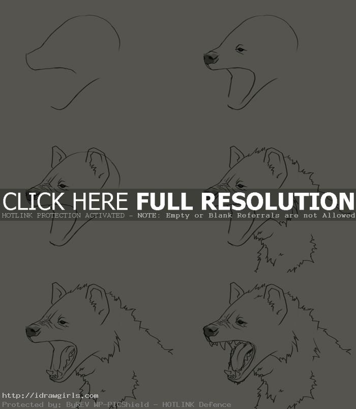 how to draw Hyena's head