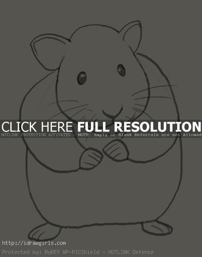 How to draw hamster