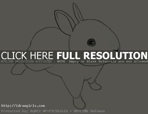 How to draw jackrabbits