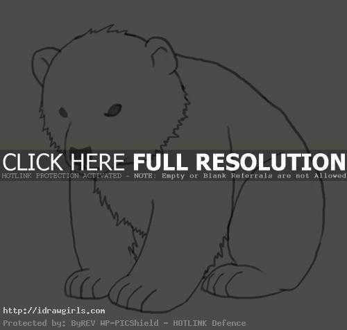 How to draw polar bear cub