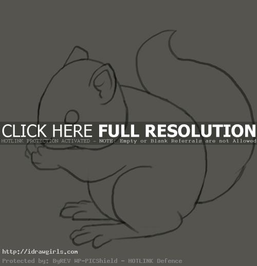 How to draw squirrel