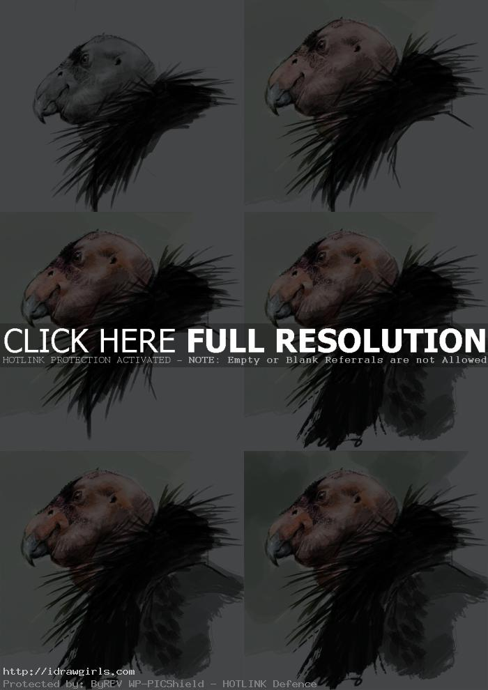 painting condor tutorial
